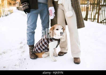 Unrecognizable senior couple outdoors with dog in winter nature. - Stock Photo