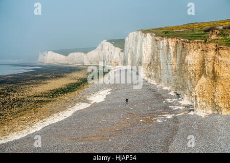 Seven Sisters Chalk Cliffs from Birling Gap on the Sussex Coast England - Stock Photo