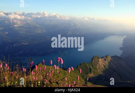 view from the brienzer rothorn - Stock Photo