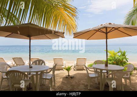 Palm leaf beach umbrella on Baltic sea beach. Stegna ...