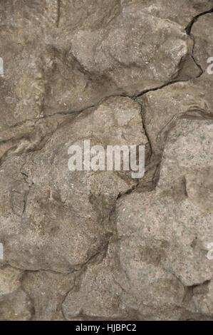 This wet limestone rock has interesting cracks and looks great with color or bw. - Stock Photo