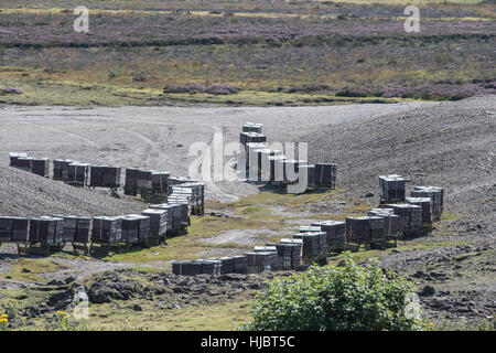 Bee hives on a heather moor, near Redmire, Yorkshire Dales, for the production of heather honey - Stock Photo