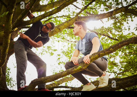 Man with personal trainer instructing how to climb tree in park - Stock Photo