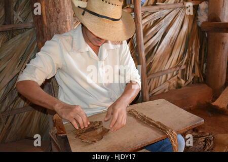 Tobacco farmer rolling a cigar in Vinales, Cuba