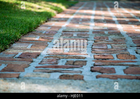 An old fashioned brick and mortar driveway with sunbeams shining across it. - Stock Photo