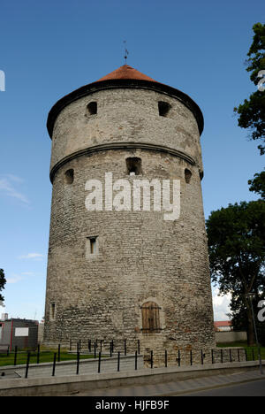 tower, estonia, blue, tower, historical, old town, style of construction, - Stock Photo