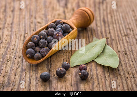 spice scoop with juniper berries and bay leaves - Stock Photo