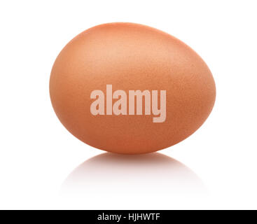 Single brown egg isolated on white - Stock Photo