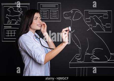 Positive female veterinarian examining a dog. - Stock Photo