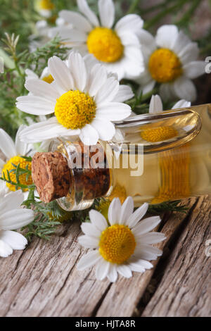 cosmetic oil in a glass bottle on the background of camomile flowers macro on wooden table vertical - Stock Photo