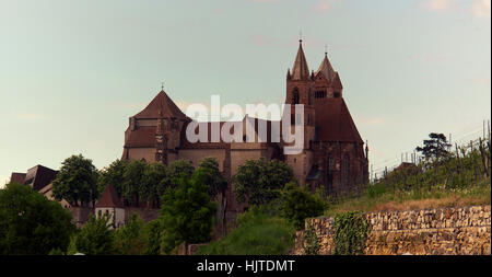 vineyard, cathedral, emblem, gothic, church, rhine, sightseeing, vineyard, - Stock Photo