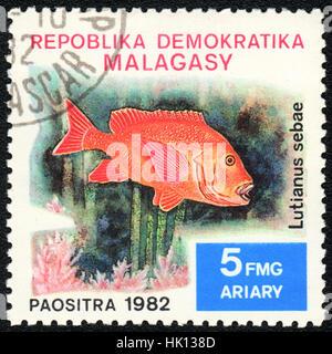 A postage  stamp printed in Republic Malagasy shows a  Fish  Lutjanus sebae,  series, circa 1982 - Stock Photo