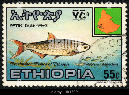 A postage stamp printed in Ethiopia shows a  Protopterus Annectens,  circa 1980 - Stock Photo