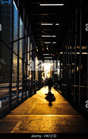New York, USA. 25th January 2017. The day dawns sunny in Manhattan. Soon in the morning great movement of people - Stock Photo