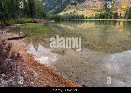 The calm waters of String Lake reflecting the Teton Mountains and fall colors on aspen trees. Grand Teton National - Stock Photo