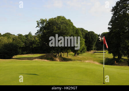 View from 7th Green over Fescue Grass back to tee area, Chislehurst Golf Club, Chislehurst Kent England - Stock Photo