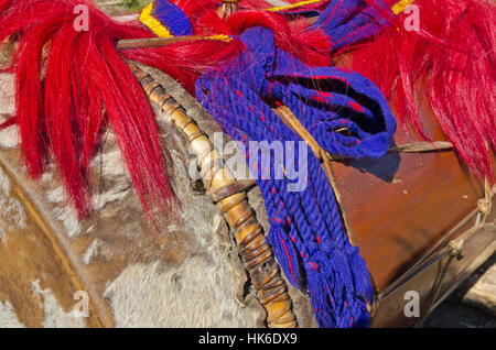 Many of the decorations and customs at Hornbill-Festival in Kohima seem to be similar to the northamerican Indians - Stock Photo