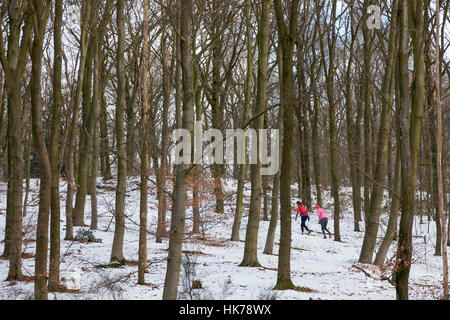 two women in colorful outfit jog in dutch winter beech forest - Stock Photo