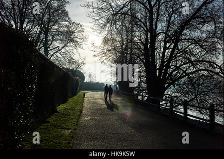 Two people walking dog on cold frosty morning - Stock Photo
