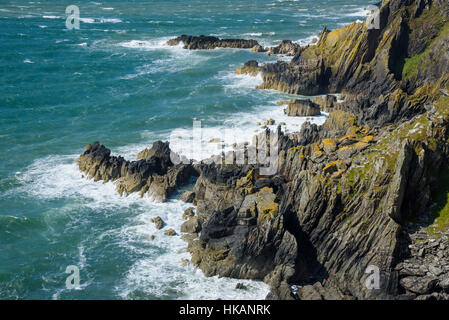 Cliffs along the Solway Firth near Isle of Whithorn, Dumfries & Galloway, Scotland - Stock Photo