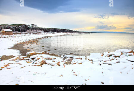 Beach bay and pine trees covered by snow on mediterranean sea in winter. Tuscany, Italy - Stock Photo