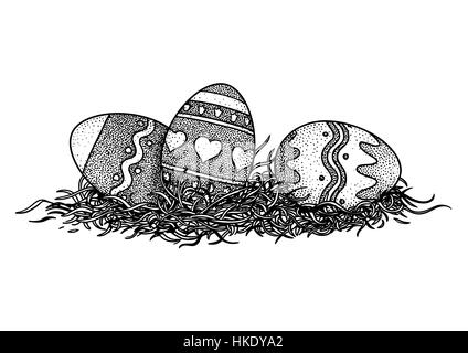 Line Drawing Nest : Bird s nest with eggs and twigs d