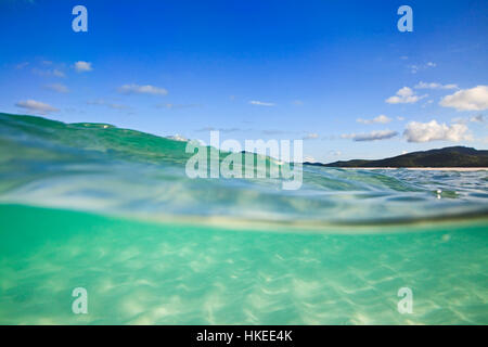 Half-submerged in clean transparent green salt water of coral sea at white silica Whitehaven beach on Whitsunday - Stock Photo