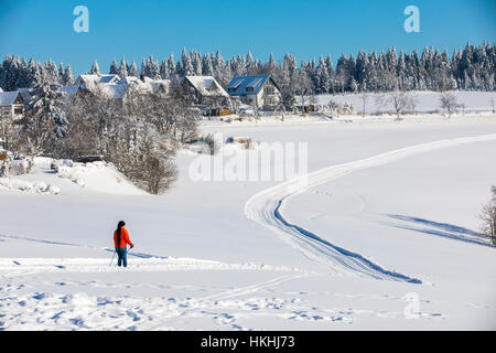 winter time in the Sauerland area, Germany, Cross-country skiing trail, - Stock Photo