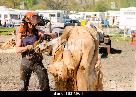 Woman uses a Stihl chainsaw to carve a tree trunk into the shape of an animal. - Stock Photo
