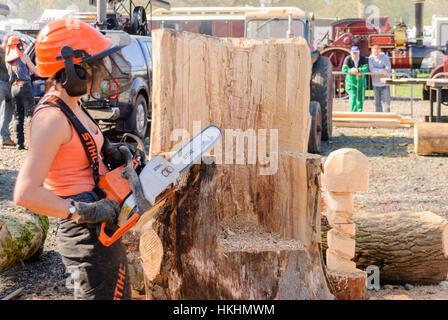 Woman uses a Stihl chainsaw to carve a tree trunk into a garden chair. - Stock Photo