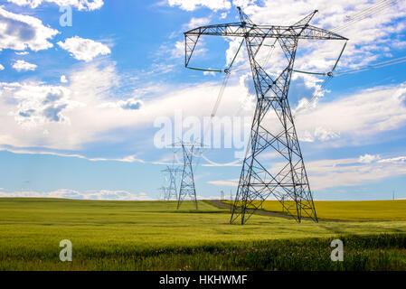 Power lines in a farm field - Stock Photo