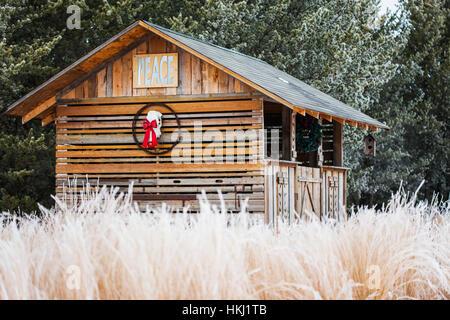Christmas Tree Farm Downe
