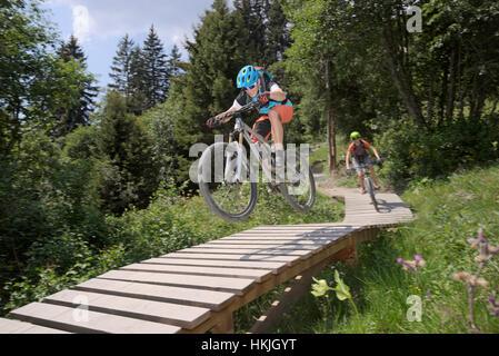 Two mountain bikers riding on footbridge through forest, Zillertal, Tyrol, Austria - Stock Photo