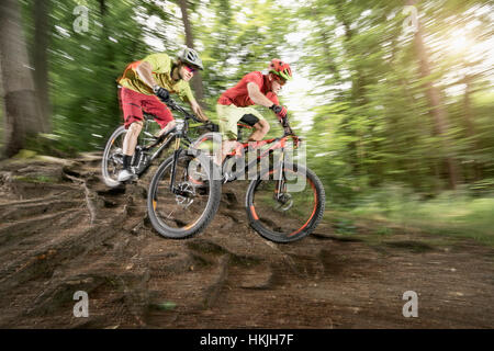 Two mountainbikers riding over roots in a forest, Bavaria, Germany - Stock Photo