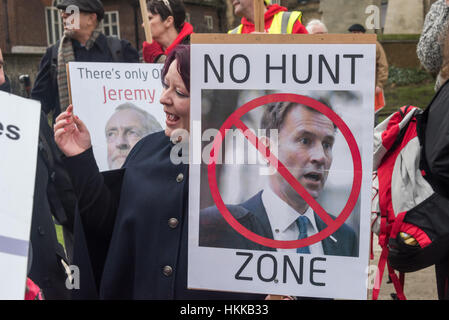 London, UK. 28th January, 2017. A campaigners holds a 'No HUnt Zone' poster at the rally opposite Parliament before - Stock Photo