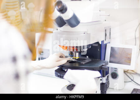 Helth care professional microscoping. - Stock Photo