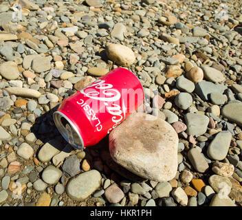 Coca colasoft drinks can abandoned as litter on shingle Uk - Stock Photo