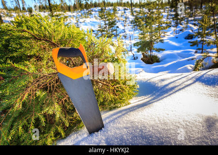 Saw leaning on a newly cut down christmas tree in winter landscape - Stock Photo