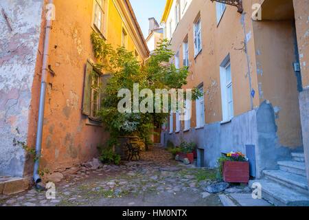 Narrow street of old town with greenery. Tallinn, Estonia - Stock Photo