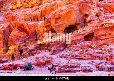 Donkey Rose Red Rock Tombs Afternoon Street of Facades Petra Jordan.  Built by the Nabataens in 200 BC to 400 AD. - Stock Photo