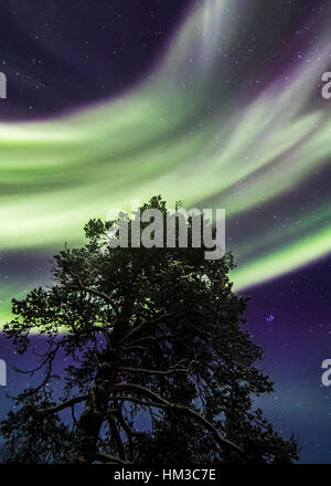 Northern lights in Urho Kekkonen national park, Finland - Stock Photo