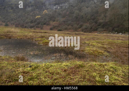 Waen Ddu raised bog, in autumn, Craig y Cilau National Nature Reserve, Brecon Beacons, Wales. - Stock Photo