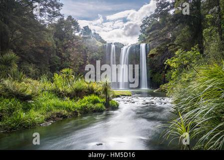 Whangarei Waterfall, temperate rainforest, Whangarei, Northland, North Island, New Zealand - Stock Photo
