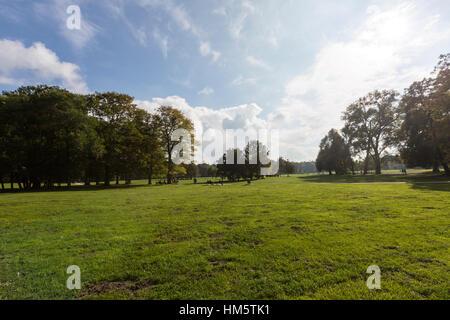 Englischer Garten, English Garden, Munich, Germany - Stock Photo
