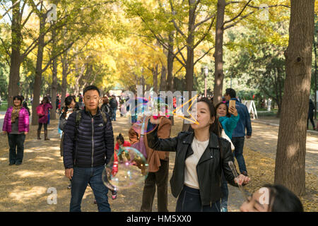 woman blowing bubbles at the Temple of Earth Park or Ditan Park in Beijing, People's Republic of China, Asia