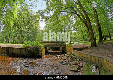 Bridge over Highland water stream in the New Forest National Park, England. - Stock Photo