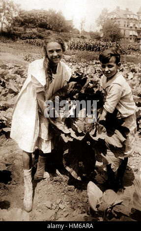 School children holding one of the large heads of cabbage raised in the War garden of P.S. 88, Borough of Queens, - Stock Photo