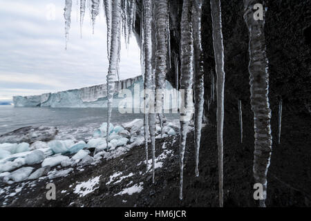 Icicles hang from the tip of a glacier in Antarctica. - Stock Photo