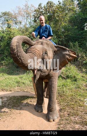 Tourist elephant trekking in northern Thailand. - Stock Photo