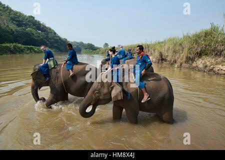 Crossing the river by elephant in northern Thailand. - Stock Photo